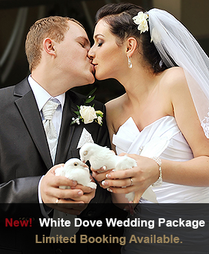 White Dove Wedding Limo Package
